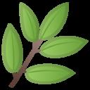 Android Oreo; U+1F33F; Emoji