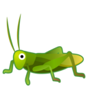 Android Oreo; U+1F997; Grillon Emoji