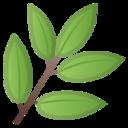 Android Pie; U+1F33F; Emoji