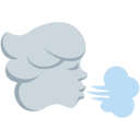 Twitter (Twemoji 2.3)